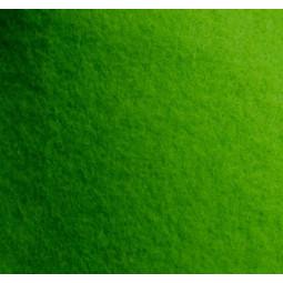 Feutrine vert cru